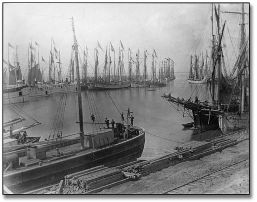 Ships in harbour, Port Dalhousie