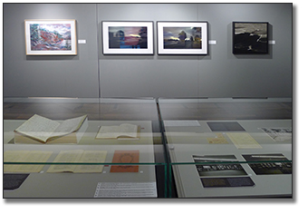 Photograph showing a view of the exhibit panels