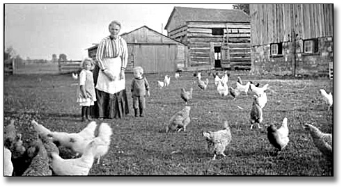 Photographie : Woman and two young children standing in a farm yard, with chickens, [vers 1940]