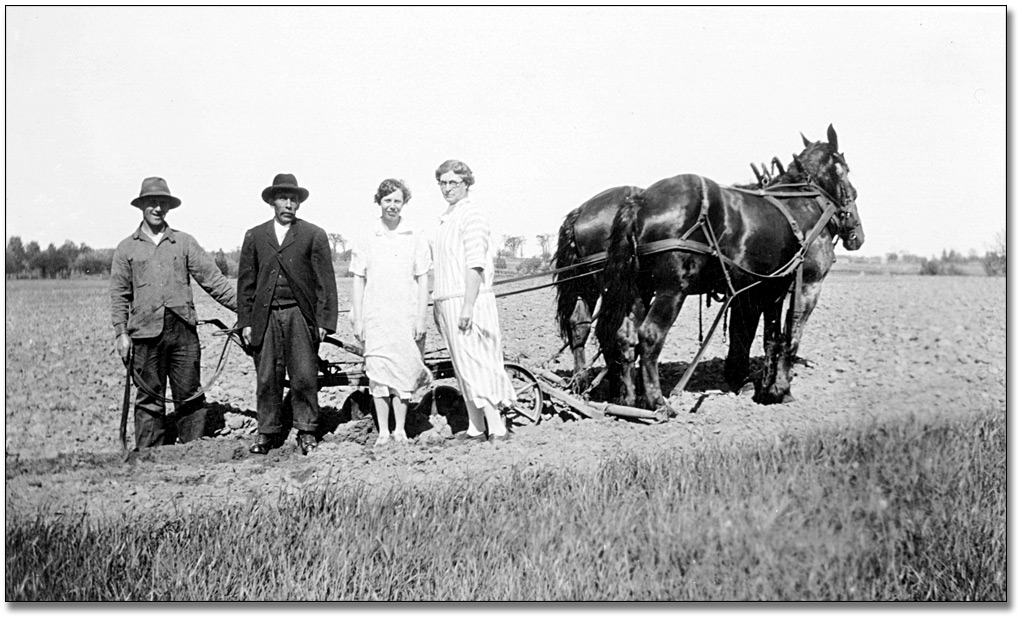 Photographie : Two women and two men stand beside a horse-drawn harrow, [between 1900 and 1920]
