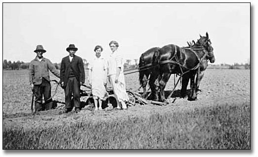 Photographie : Two women and two men stand beside a horse-drawn harrow, [entre 1900 et 1920]