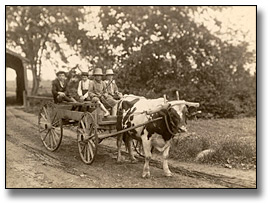 Photographie : Farm boys taking a ride on a cart, 1907