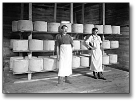Photographie : Inside the cheese factory, Eastern Ontario, [entre 1895 et 1910]