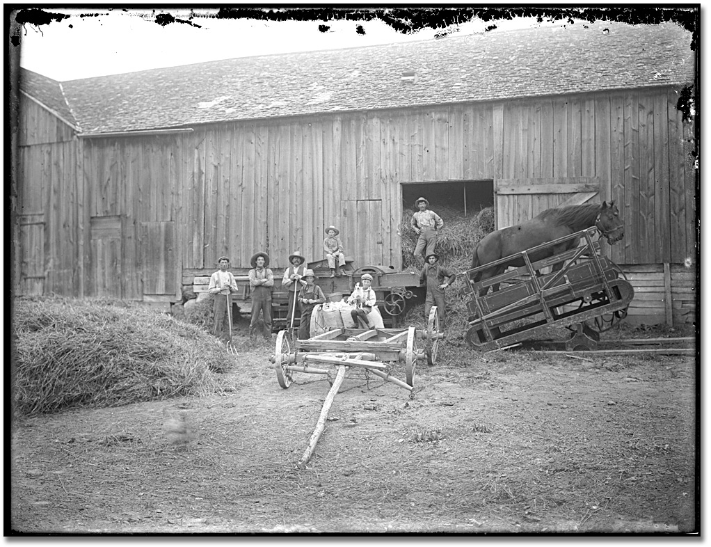 Photographie : Farmers moving hay into a barn, [entre 1895 et 1910]