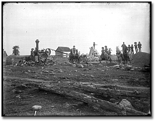 Photographie : Farming scene (removing rocks from ground?), Eastern Ontario, [entre 1895 et 1910]