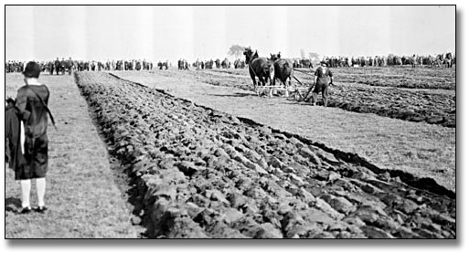 Photographie : Ploughing match in Ilderton, Ontario, [vers 1920]