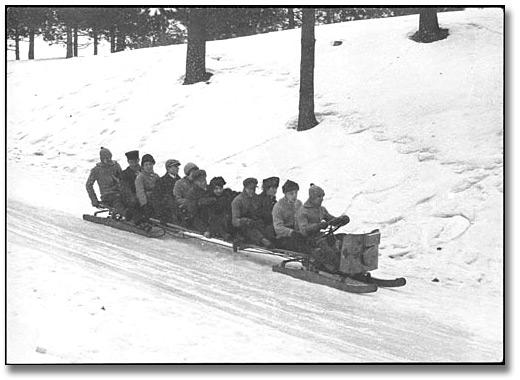 Photo: Tobogganing in High Park, 1915