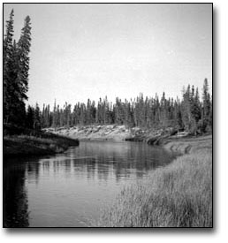 Black and white photograph of River Running Through a Pristine Wilderness Area